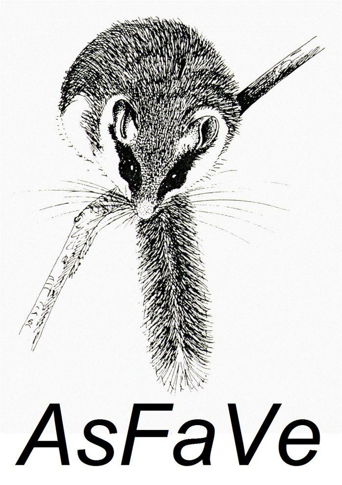 AsFaVe_logo completo.jpg